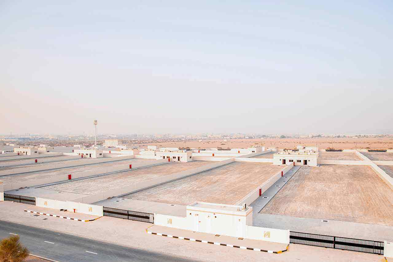 Industrial Area in Sharjah | Emirates for Industrial Cities