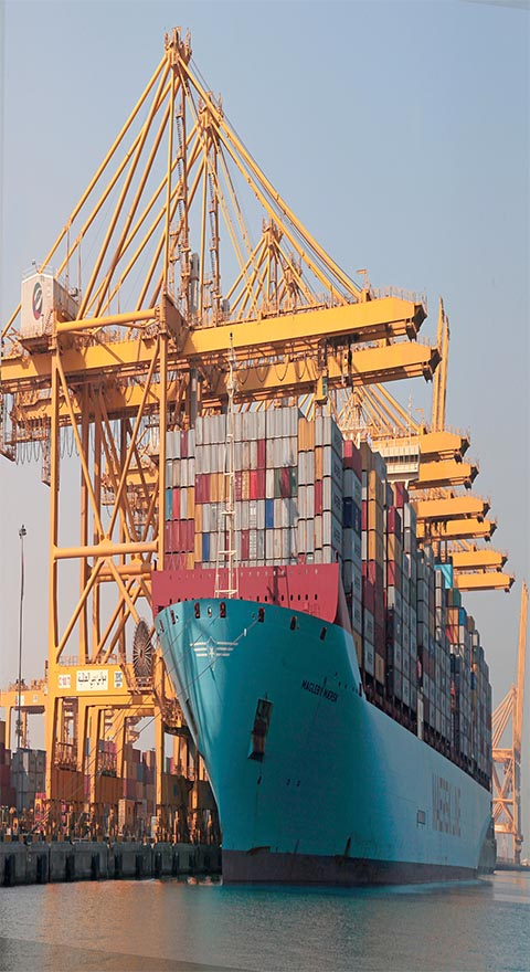 Ships at Jebel Seaport near to Warehouses and Industrial Plots